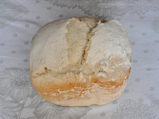 Pane semi integrale senza glutine con semi di girasole